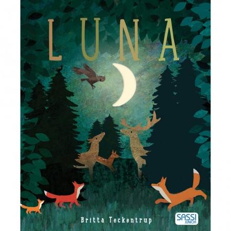 Sassi Luna Libri